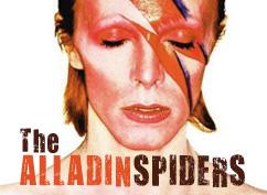 ALADDIN SPIDERS