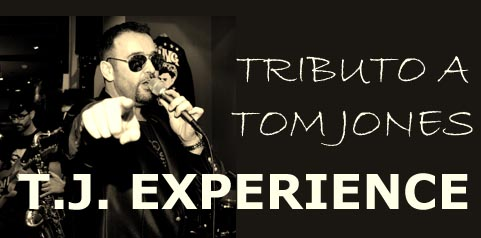 T.J. EXPERIENCE